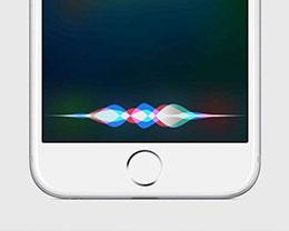 大数据时代 也许苹果在未来能带来更好服务