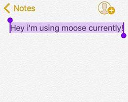 插件Moose:随意改变光标选中区域的颜色