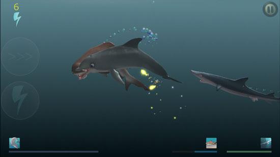 《食人鲨:海豚的崛起》:海底世界的物竞天择 大鱼吃小鱼
