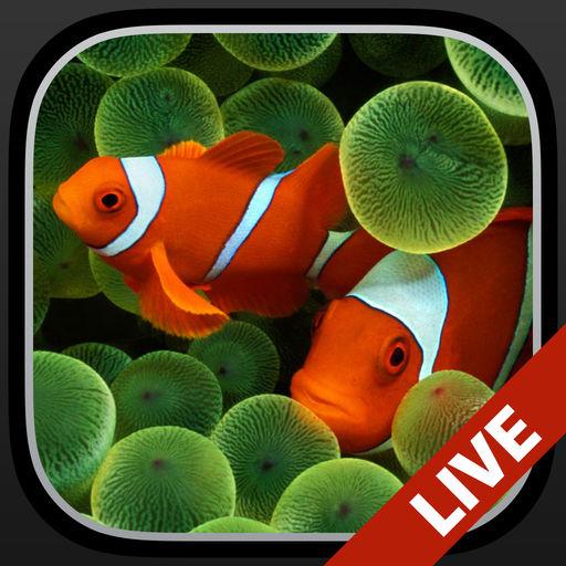 水族馆锁屏动态壁纸:专门为iPhone打造的动画背景